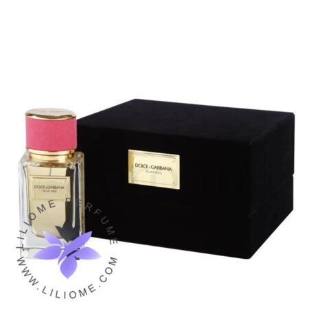 عطر ادکلن دی اند جی دلچه گابانا ولوت رز-Dolce Gabbana Velvet Rose